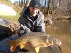 Colin Meneaud 25lbs 0oz Common Carp from Sweet Chestnut Lake using Carp Cuisine 'Frankfurter Sausage' single hookers in 18mm... With a 36lb mirror already on the unhooking mat, this 25lb common
