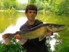 Colin Goletto 9lbs 4oz Zander from Sweet Chestnut Lake using one up shad.. Soft Lure