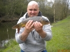 4lbs 0oz Mirror Carp from Tackeroo using Mainline Cell.