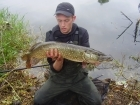 B Pool 11lbs 0oz Pike from Burlington pool (Midlesure Angling Centre Bushbury)Tel:01902-783491