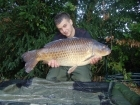18lbs 0oz Common Carp from Penns Hall. Solid bags full of pellets