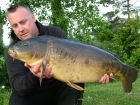 23lbs 2oz Mirror Carp from Billing Aquadrome using Solar Club Mix (Squid & Octopus, Stimulin and Anchovy).