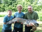 50lbs 0oz Catfish (Wels) from Etang de Cosse using Solar Club Mix (Squid & Octopus, Stimulin and Anchovy).