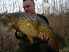 14lbs 0oz Common Carp from Burnham-on-sea Holiday Village using Mainline Grange CSL.. Biggest of 6 carp in a day session