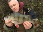 2lbs 3oz 2dr Perch from Staffs And Worcester Canal using Savage Gear.
