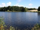 Lac Les Pins - Fishing Venue - Coarse / Carp in Ladignac-le-Long, France