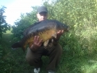 21lbs 4oz Mirror Carp from Jammies. Tight against lilly's on the left side of the swim.
