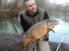 Tom Tank 12lbs 0oz Common Carp from Dyffryn Springs