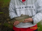 Jack Ockenden 3lbs 2oz Mirror Carp from Stanton Lakes using TF Gear.. 1st Carp At Stanton 