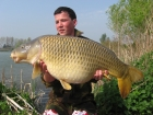 Essex Carp Baits 26lbs 0oz Common Carp from Aquatels Carp Fishery using Essex Carp Baits C.I.A Chocolate Intense Amino.