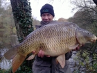 27lbs 0oz Common Carp from Sweet Chestnut Lake using SuperU BienVu.. Waggler and sweetcorn in 12 feet of water. 8lb line to size 10 barbless hook. Took 15 minutes to land. Photo taken on mobile as