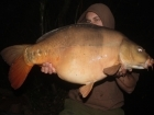 27lbs 14oz Mirror Carp from Rookley Country Park
